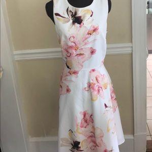 WHBM Beautiful summer dress